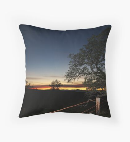 In the West Throw Pillow
