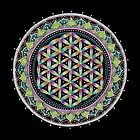 Flower of Life Mandala by Laural Virtues Wauters