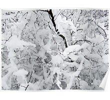 White silence Poster