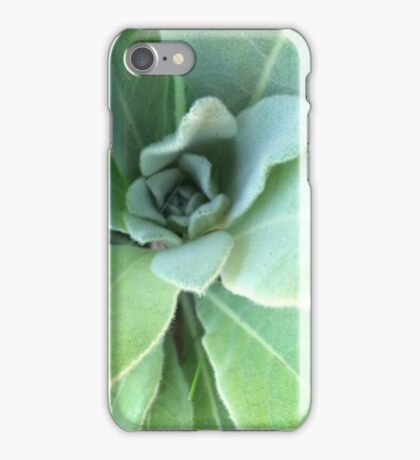 Swirling Lamb's Ear Plant iPhone Case/Skin
