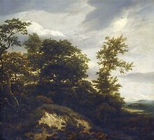 Iacob van Ruisdael –  A Wooded Dune Landscape (c. 1648) by Adam Asar