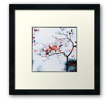 I see strawberries in the bokeh; Rikugien Park, Tokyo Framed Print