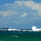 Coal Ship - Swansea Heads NSW by Bev Woodman