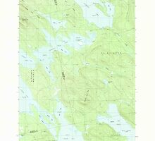 Maine USGS Historical Map Scraggly Lake 102949 1988 24000 by wetdryvac