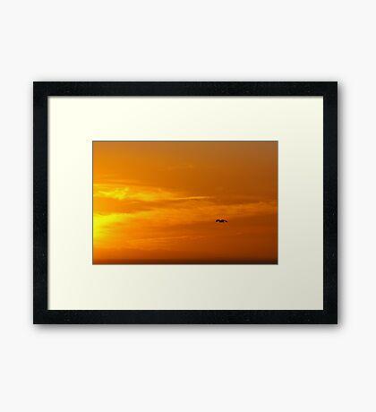 Sunset Hunt Framed Print