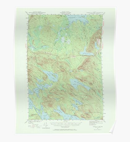 Maine USGS Historical Map Scraggly Lake 306759 1941 62500 Poster