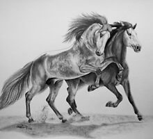 """Spanish Brothers"" PRE stallions by SD 2010 Photography & Equine Art Creations"