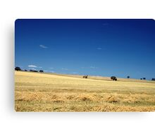 SA Country Canvas Print