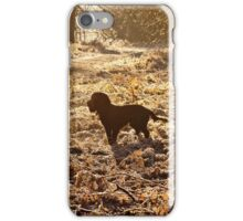 Frosty Morning iPhone Case/Skin