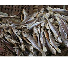 Fish in cane basket Photographic Print