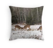 Buck Fawns Throw Pillow
