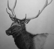 Bull Elk 2 by Jospeh Fawcett