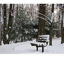 Snowy Seat Photographic Print