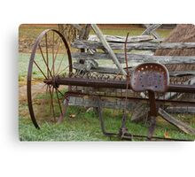 In Its Hay Days Canvas Print