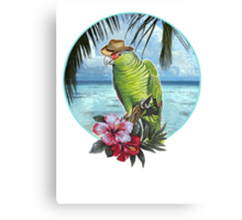 caribbean cool Canvas Print