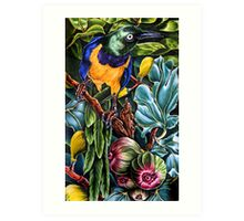 These are my figs Art Print