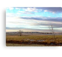 The Prairies (1) Canvas Print