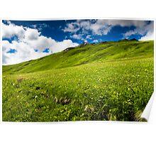 green hills Poster