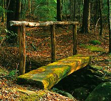 LOG BRIDGE by Chuck Wickham