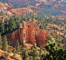 Natural castle in floor of Bryce canyon by loiteke