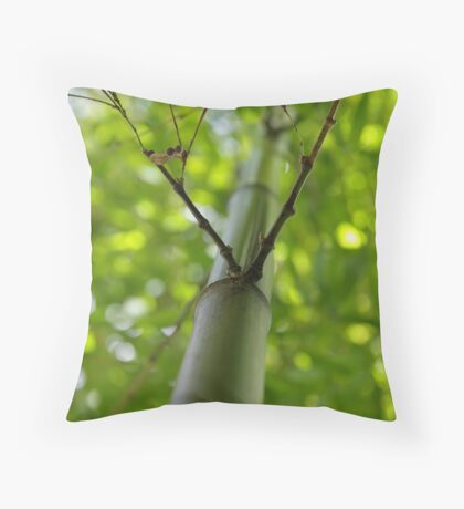 Bamboo Looking Up. Throw Pillow