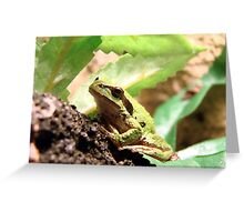 Green Frogger Greeting Card
