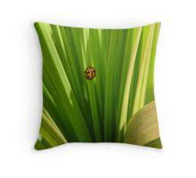 Ladybug Lair Throw Pillow