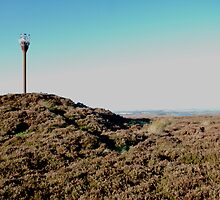 Danby Beacon, (just erected) by dougie1