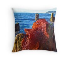 Driftwood Details 3 Throw Pillow