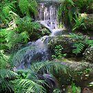 Natural Springs Waterfall by Heavenandus777