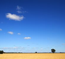 Cobram by Darren Stones