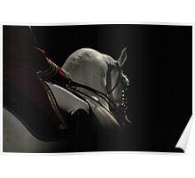 Stallion shadow Poster