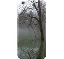 knob creek early morning flood iPhone Case/Skin