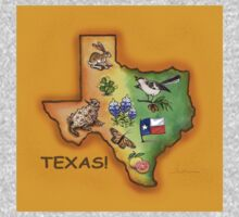 Texas Symbols by Theresa Bayer