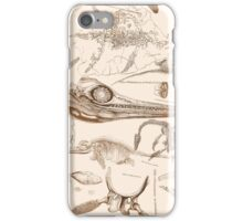 Marine Reptile Engravings Brown iPhone Case/Skin