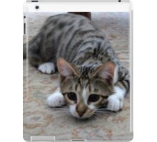 Monty the lively Cat  iPad Case/Skin