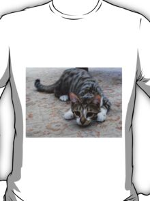 Monty the lively Cat  T-Shirt
