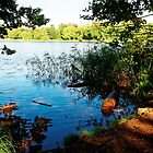 Virginia Water Lake, Windsor, England by atomov