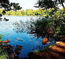 Virginia Water Lake, Windsor, England by atomov