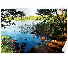 Virginia Water Lake, Windsor, England Poster
