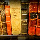 Jefferson's  Bookshelf by Tracey Hampton