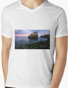 Bird Rock Mens V-Neck T-Shirt