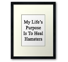 My Life's Purpose Is To Heal Hamsters  Framed Print