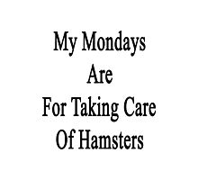 My Mondays Are For Taking Care Of Hamsters  Photographic Print