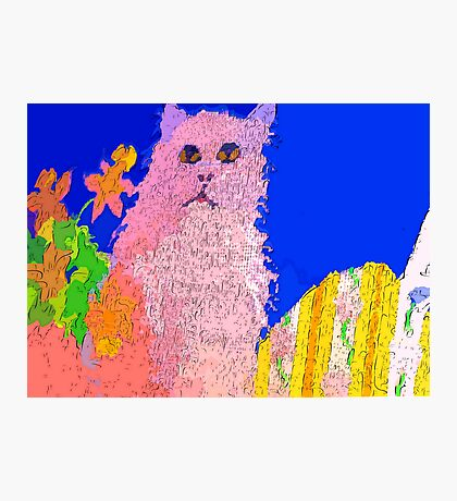 Pink cat on a patio table Photographic Print