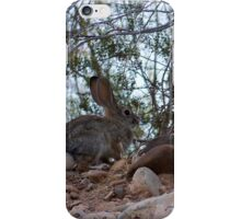 Fuzzy furry wittle wabit iPhone Case/Skin