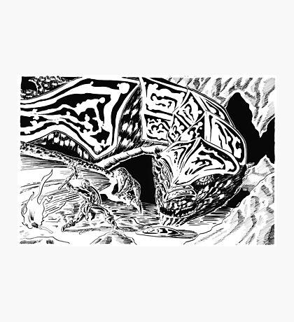 Dragon Slayer! Photographic Print