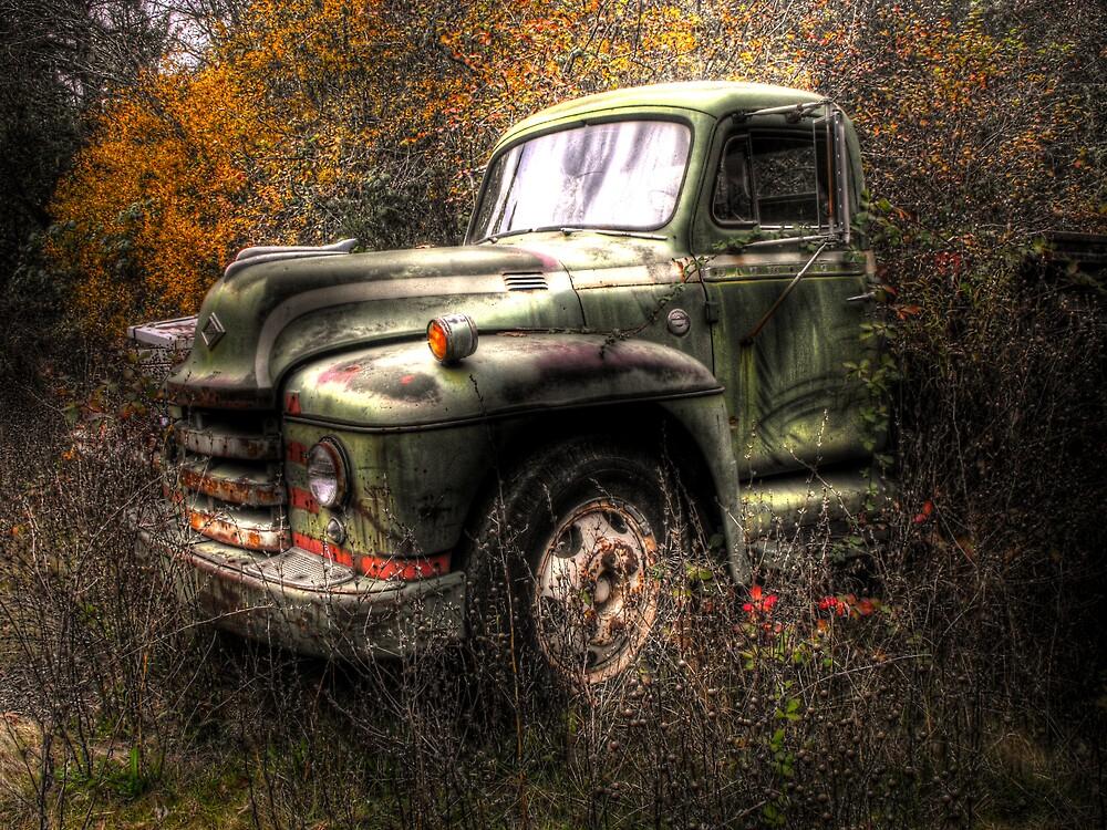 Old Trucks Never Die by Stephen  Van Tuyl
