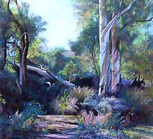 Autumn - Flinders Ranges by Lynda Robinson