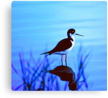 Solve. What Kind of Bird? solved by a bird expert.. Black Neck stilt Canvas Print